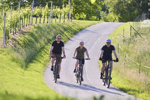Toller Ausgangspunkt für Radfahrer und Wanderer